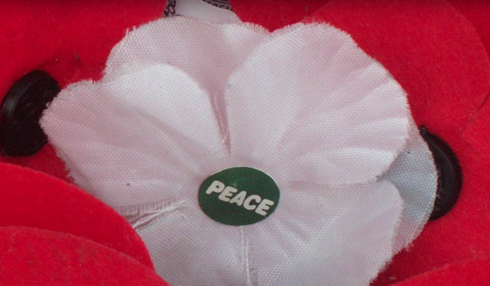 Why do people wear white poppies for Remembrance Day?