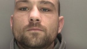 Man jailed after letting his dog savage a cat to death