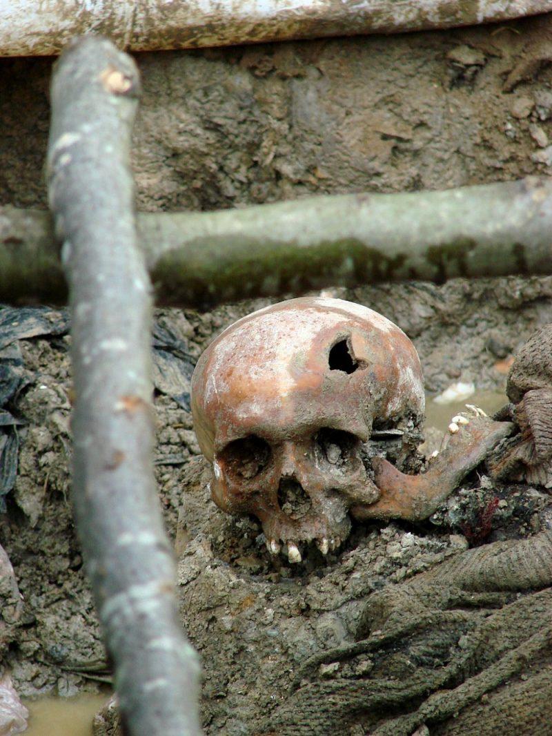 Skull of a victim of the July 1995 Srebrenica massacre. Exhumed mass grave outside the village of Potočari, Bosnia and Herzegovina. July 2007 - Photo by Adam Jones