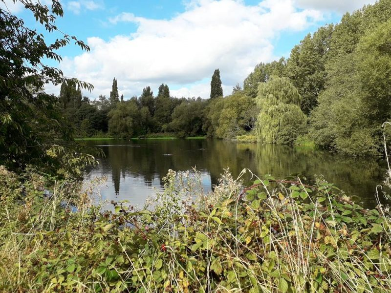 Friends of Perry Park meet up regularly to help keep Perry Park clean and tidy